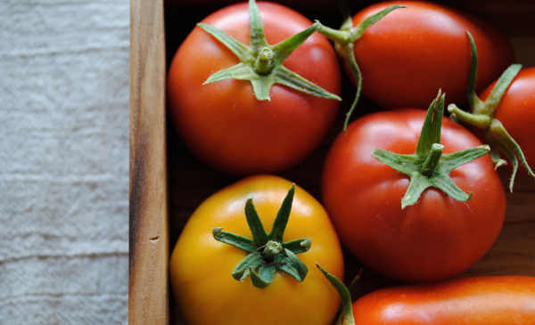 Garden tomatoes by the sensualist