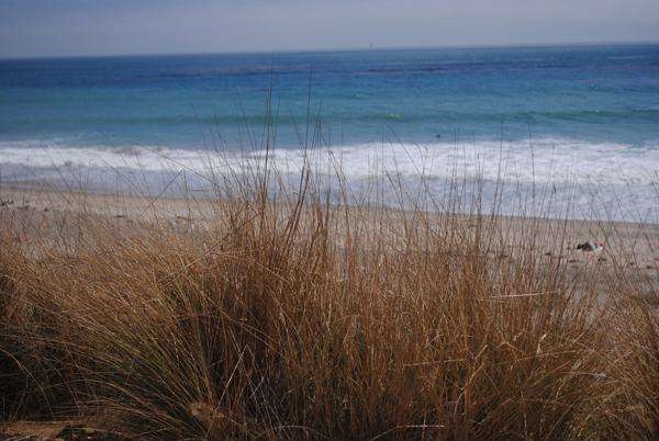 Seaside by the sensualist