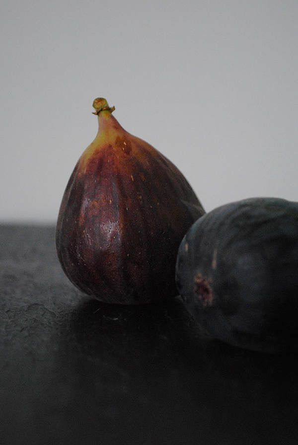 Figs5 by the sensualist