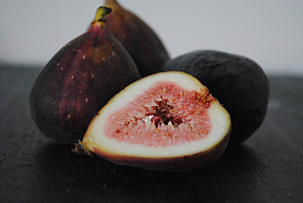 Figs6 by the sensualist