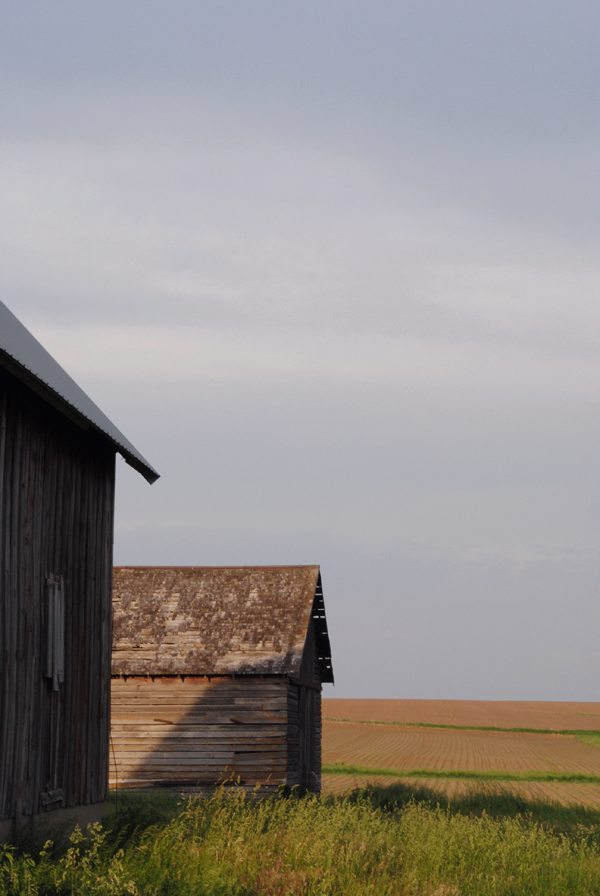Barns by the sensualist