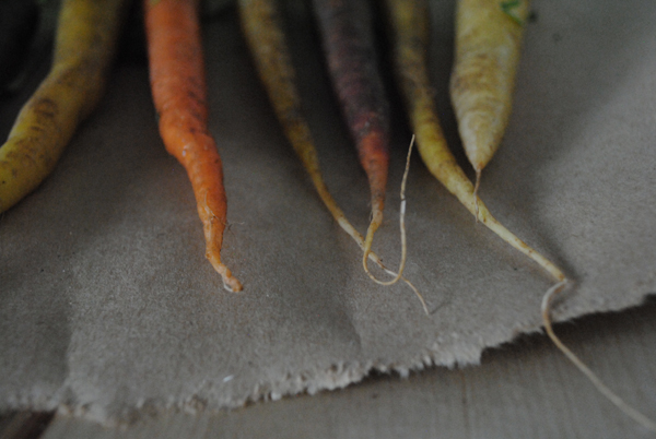 Carrots2 by the sensualist